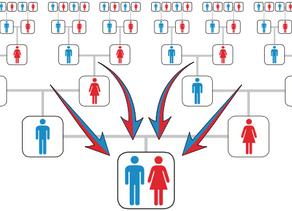 DNA - Where Do I Test?  Part 2
