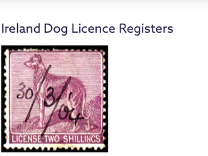 Yes, Dog Licenses