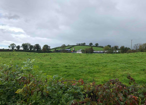 Why Visit Ireland?