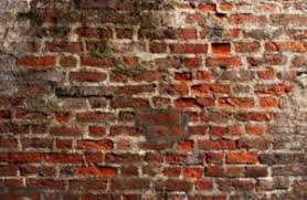Do you have a Brick Wall?