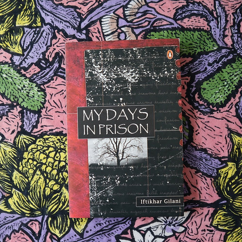 My Days in Prison by Iftikhar Gilani