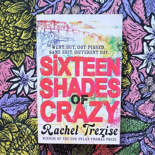 Sixteen Shades of Crazy by Rachel Trezise