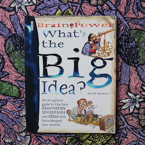 What's The Big Idea? By David Stewart