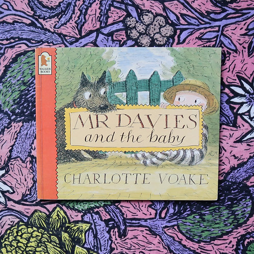Mr Davies and the Baby by Charlotte Voake