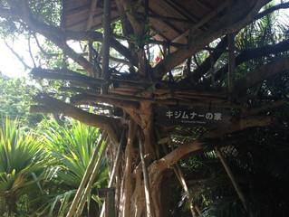 ライフオーガナイザー入門講座開催in沖縄