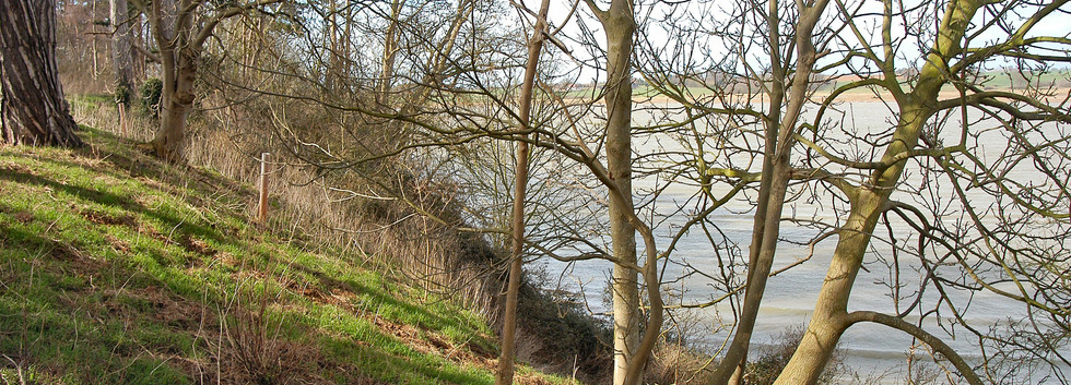 River Path Nr Ramsholt Rocks
