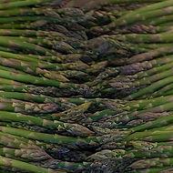 Asparagus-square-1.jpg