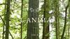 2016 L'ANIMA vo.8 開催決定!