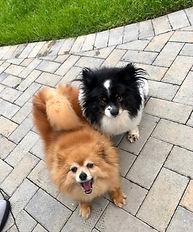 Lucy & Cassie