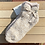 Thumbnail: CozyChic 2 Pair Tennis Sock Set