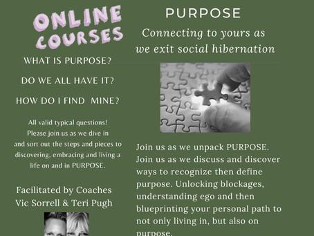 On-line Workshop