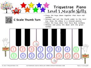 Level 1 Scales