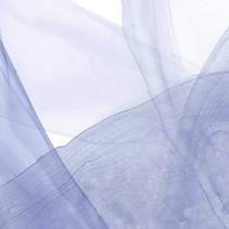 Blue Veils by Michelle Farrell