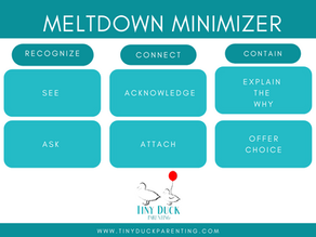 Your Toddler and Minimizing Meltdowns