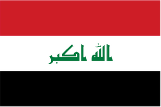 Power Sector Reform: A Project for Iraq