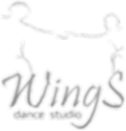 dnc-logo.webp