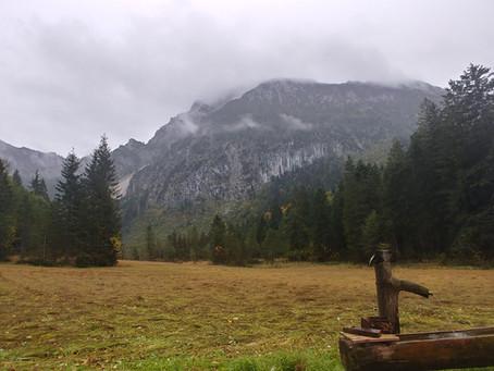 An Alpine Adventure : Pursuing Mountain Gams
