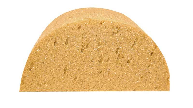 Half Moon Sponge