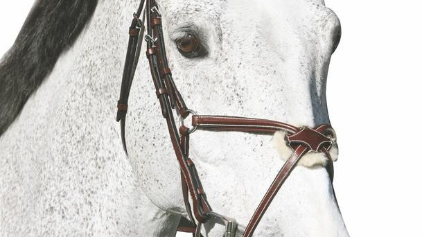 Mono Crown Raised Figure Eight Bridle With Rubber Reins