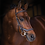 Thumbnail: Rambo® Micklem® Deluxe Competition Bridle