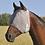 Thumbnail: Cashel Crusader Fly Mask