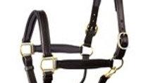"1"" Horse Padded Halter  w/ Brass Hardware"