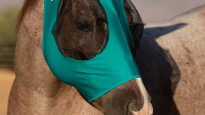 Profchoice Comfort Fit Lycra Fly Mask
