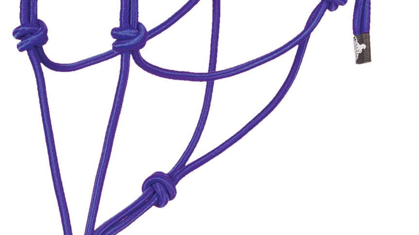 Economy Mountain Rope Halter