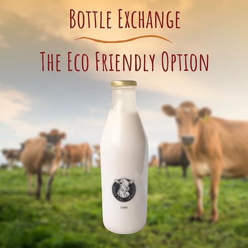 Milk in glass bottles NZ
