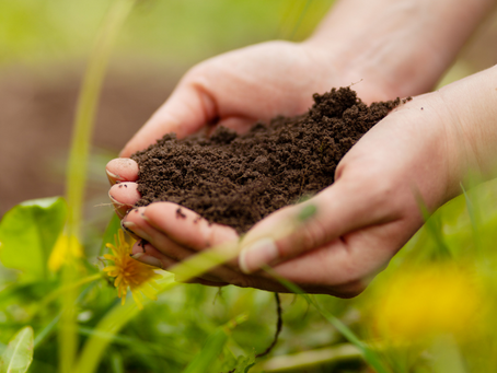 10 Sustainable Farming Practices and Why They Matter