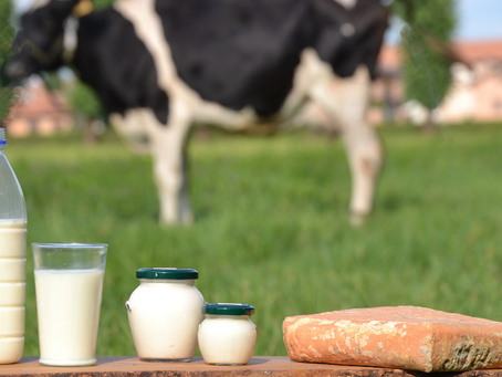 What is A2 Milk?