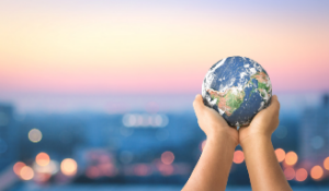 10 Sustainability Trends To Watch in 2021