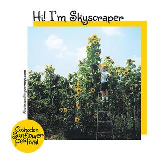 Hi I'm Sunflower Template_skyscraper.jpg