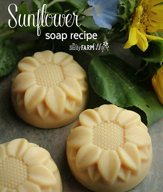 sunflower-soap-recipe-for-things-to-make
