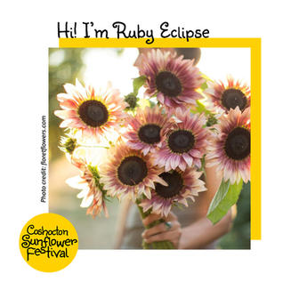Hi I'm Sunflower Template_RubyEclipse.jp