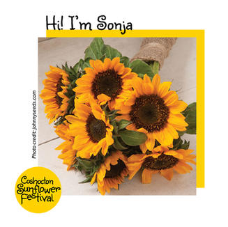 Hi I'm Sunflower Template_Sonja.jpg