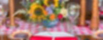 Picnic Styled Shoot-WEB-10.jpg