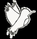 2021 Logo Clean.png