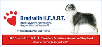 2117951.jpg Bred with Heart.jpg