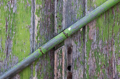 דלת ירוקה