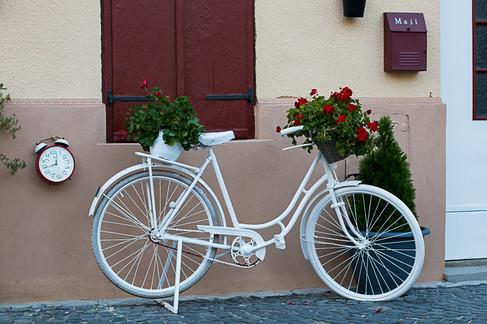 אופניים בעיר