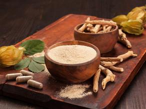 Ashwagandha : An ancient herb for modern lifestyle