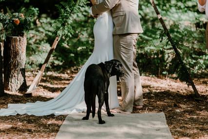 charlie-kelly-wedding-Full_Size-660.jpg