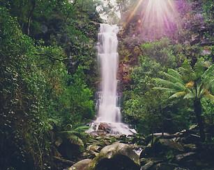 Erskine Falls, Victoria, Australia