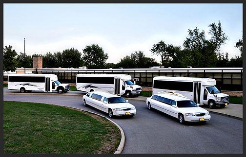 Our fleet 8-28 passengers