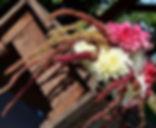 Playing with dahlias #farmhouseflowers #