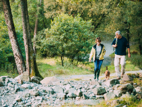 Saving for Retirement: What is an IRA?