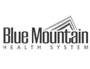 BlueMtnHealth V1.png