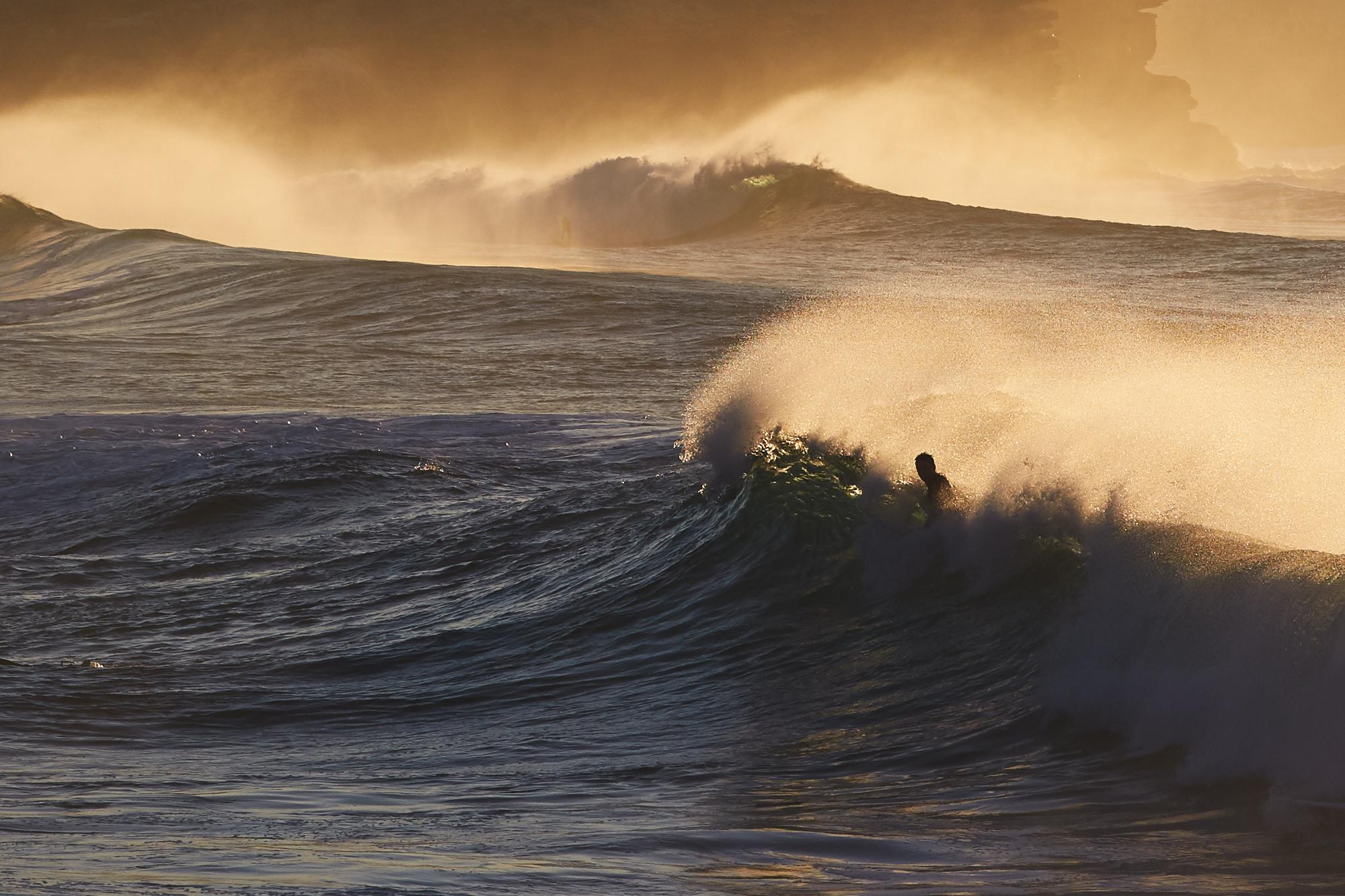 Surfing in Bronte