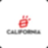 CALIFORNIA_Mesa de trabajo 1.png